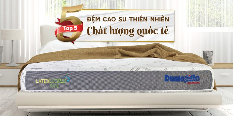 top 5 chiec dem cao su thien nhien chat luong quoc te